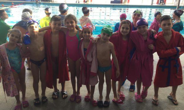 VIII campionato propaganda di nuoto